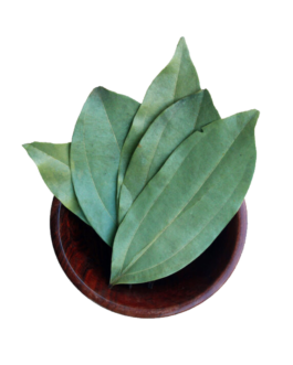 Fresh Organic Whole Bay Leaves